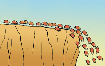 Lemmings | David Griesing | Work Life Reward Author ... Obama Lemmings Jumping Off A Cliff